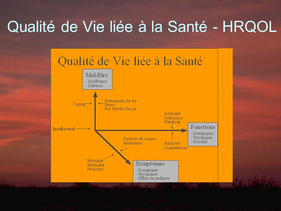 QALY: Quality Adjusted Life Years Treatment Value = QALY - Cost if QALY= Number of Years * Quality of Years Le principe de cette méthode d approche développée par G.W.