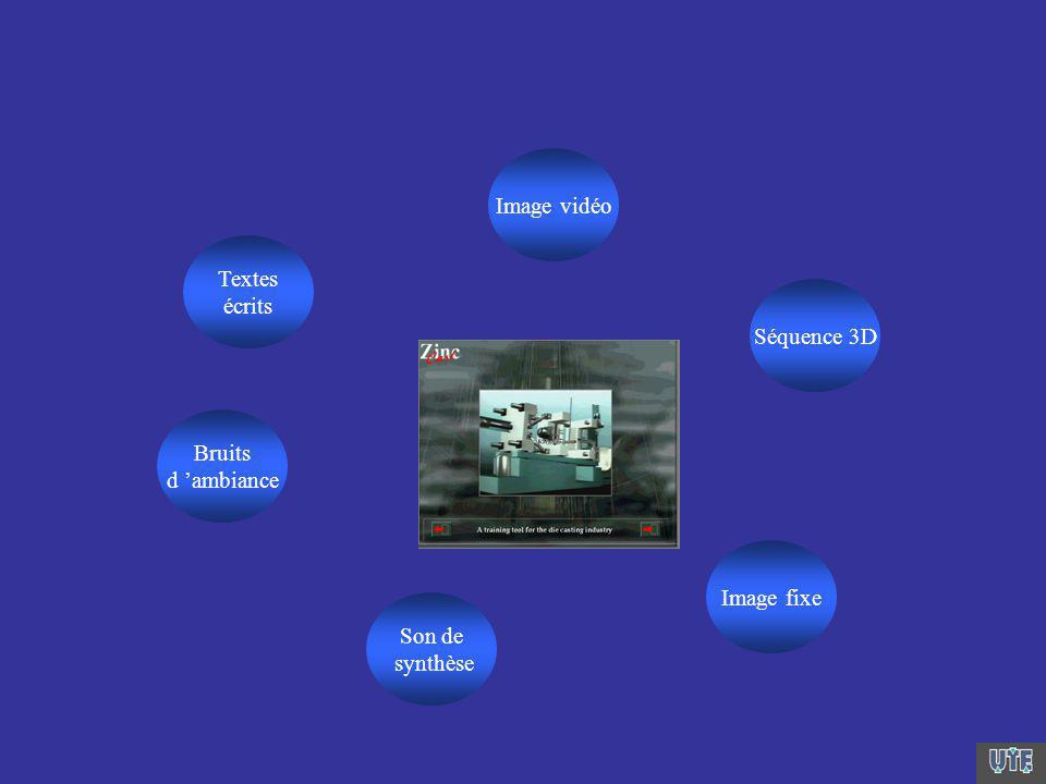 Image vidéo Séquence 3D Image fixe Son de synthèse Bruits d ambiance Textes écrits