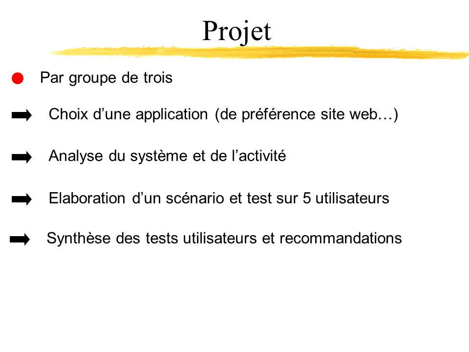 Par groupe de trois Projet Choix dune application (de préférence site web…) Analyse du système et de lactivité Elaboration dun scénario et test sur 5 utilisateurs Synthèse des tests utilisateurs et recommandations