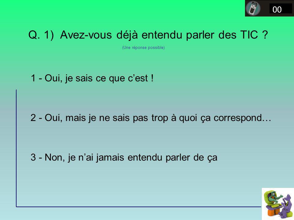Q. 1) Avez-vous déjà entendu parler des TIC ? 00 1 - Oui, je sais ce que cest ! 2 - Oui, mais je ne sais pas trop à quoi ça correspond… 3 - Non, je na