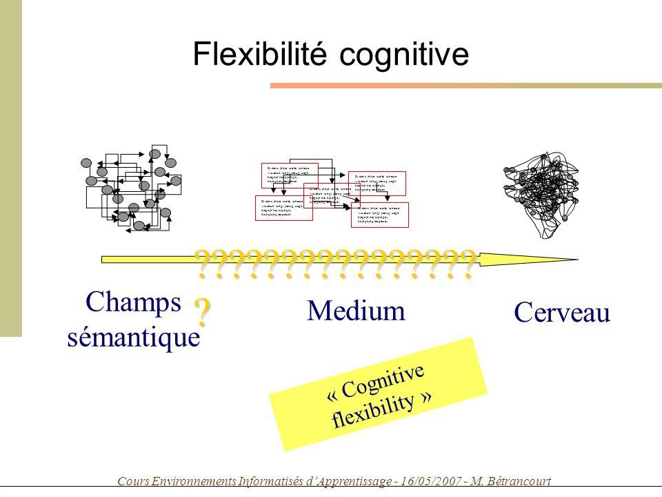 Cours Environnements Informatisés dApprentissage - 16/05/2007 - M. Bétrancourt Flexibilité cognitive Champs sémantique Medium Cerveau ????????????????