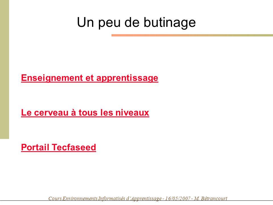 Cours Environnements Informatisés dApprentissage - 16/05/2007 - M. Bétrancourt Un peu de butinage Enseignement et apprentissage Le cerveau à tous les