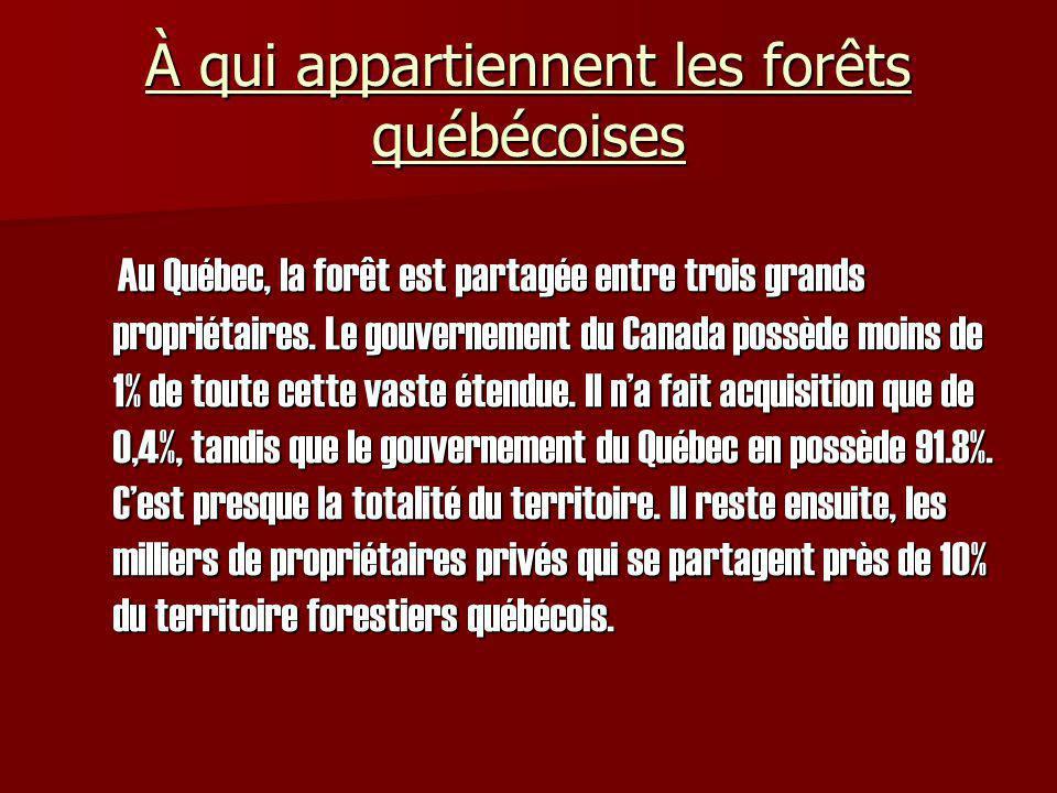 À qui appartiennent les forêts québécoises Au Québec, la forêt est partagée entre trois grands propriétaires. Le gouvernement du Canada possède moins
