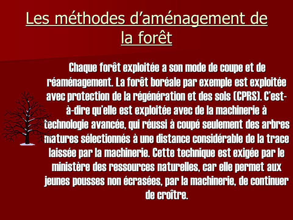 Les méthodes daménagement de la forêt (suite) Dans les forêts de feuillues le même type dexploitement est utilisé, mais cette fois-ci cela est pour donner de lespace aux arbres non coupés, pour une meilleure croissance.