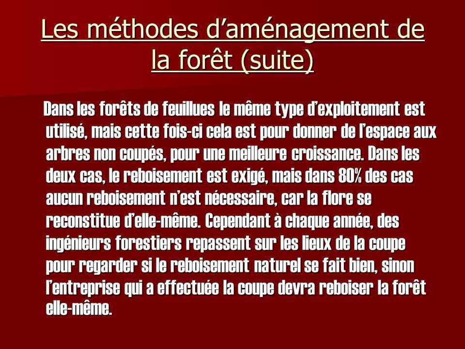 Conclusion Pour conclure, chacun des 3 grands types de forêts, appartenant à trois grands propriétaires, à son propre système de réaménagement et ses propres caractéristiques physiques qui les rendent unique et indispensable à léconomie québécoise.