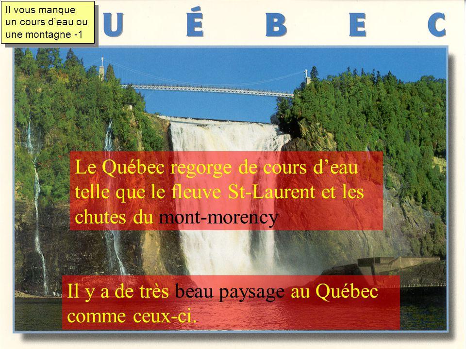 La réserve nationale de faune du cap Tourmente est située à 50 km au nord-est de Québec Les oies blanche y vont se reposer vers le milieu du mois doct