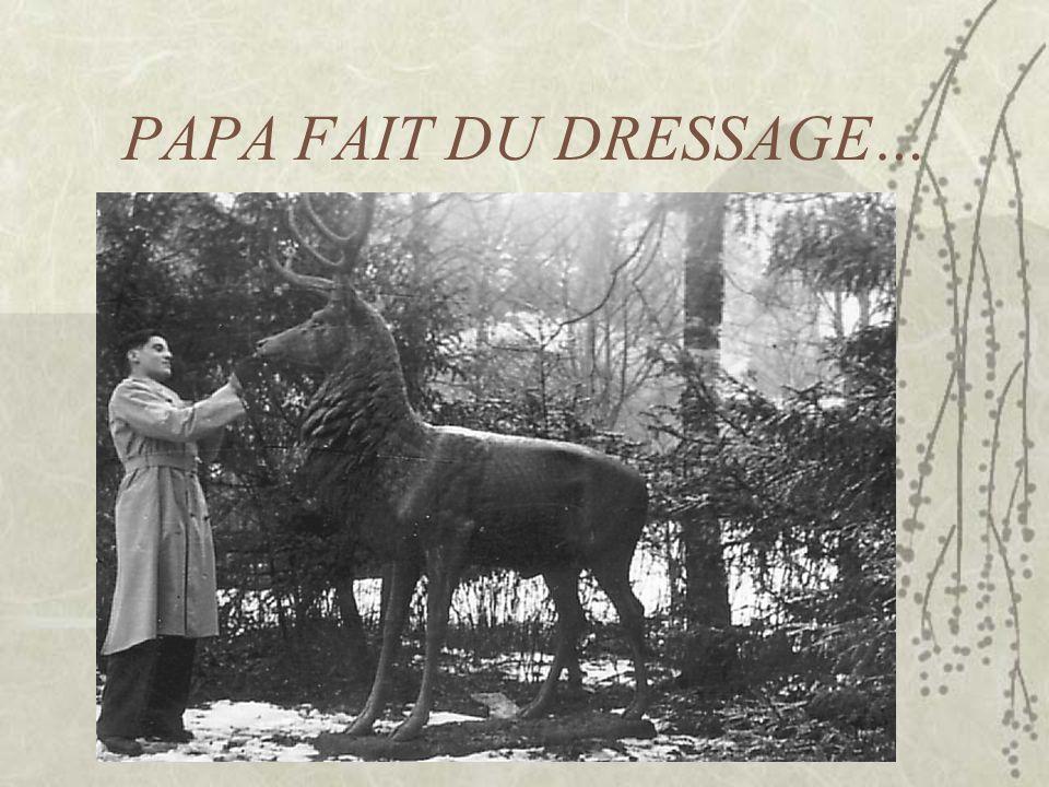 PAPA FAIT DU DRESSAGE…