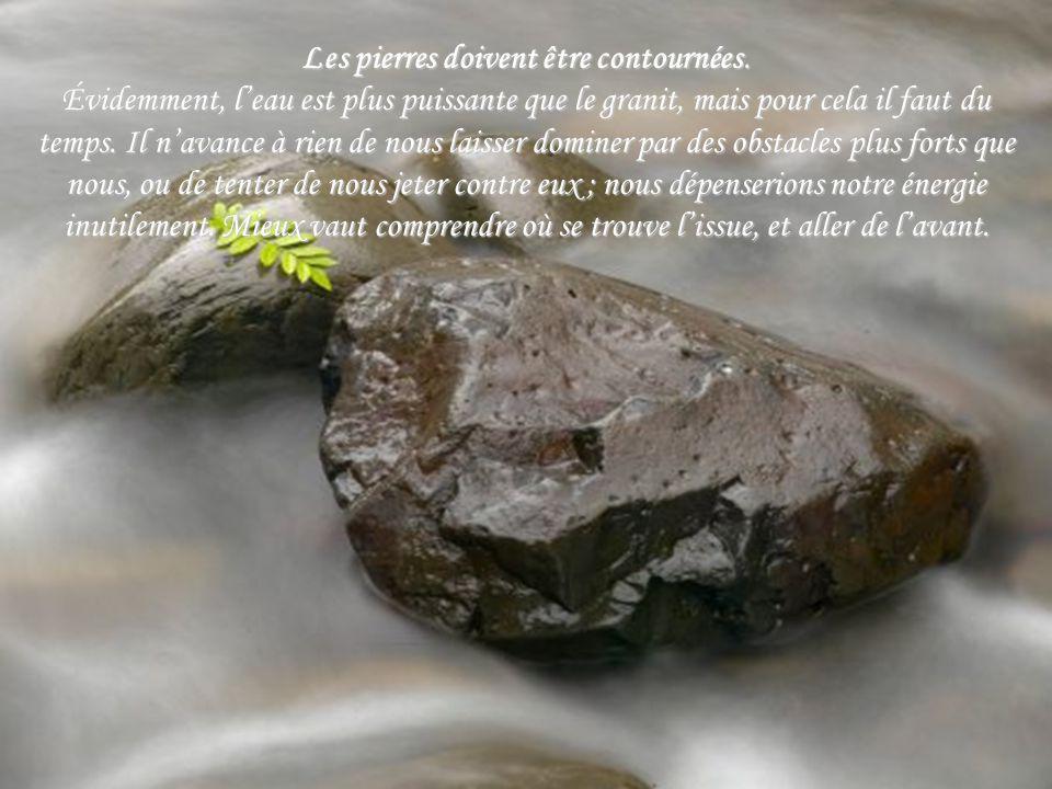 Les pierres doivent être contournées.