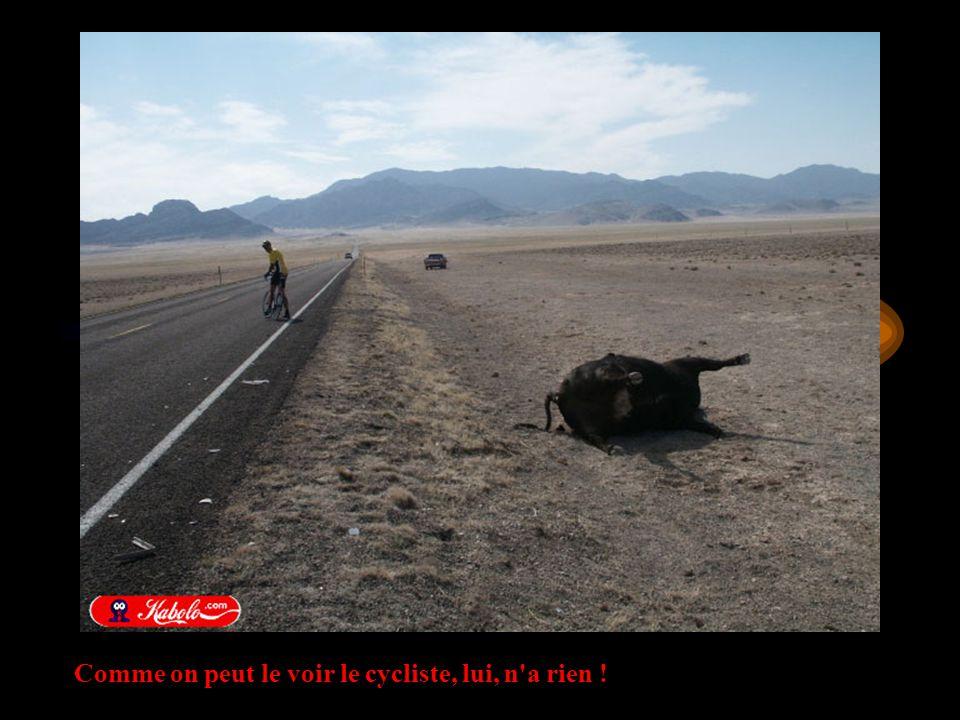 Comme on peut le voir le cycliste, lui, n a rien !