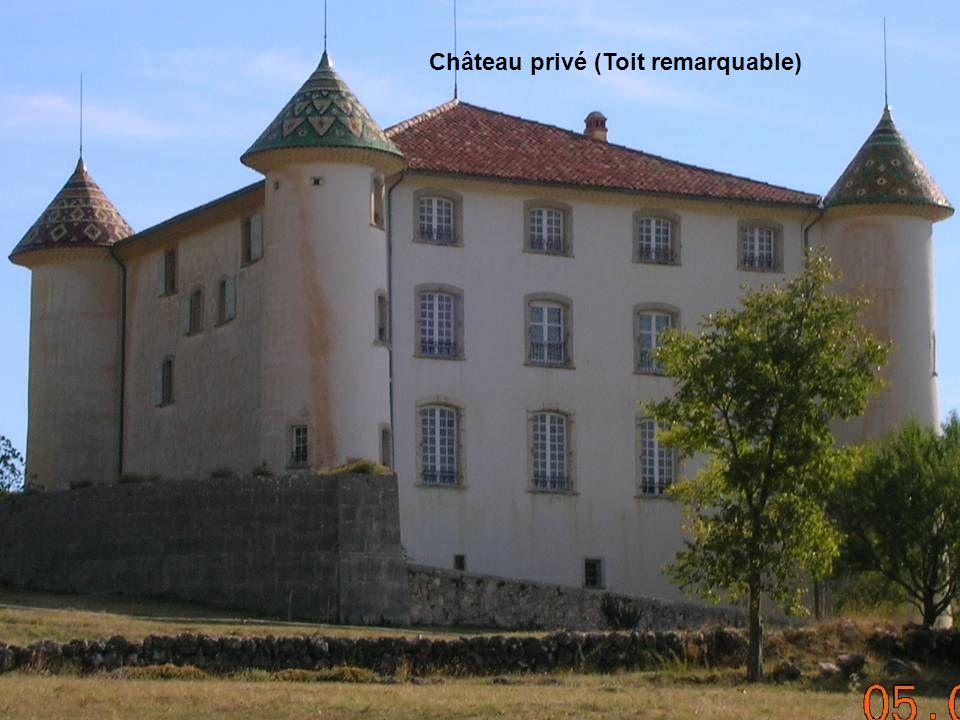 Château privé (Toit remarquable)