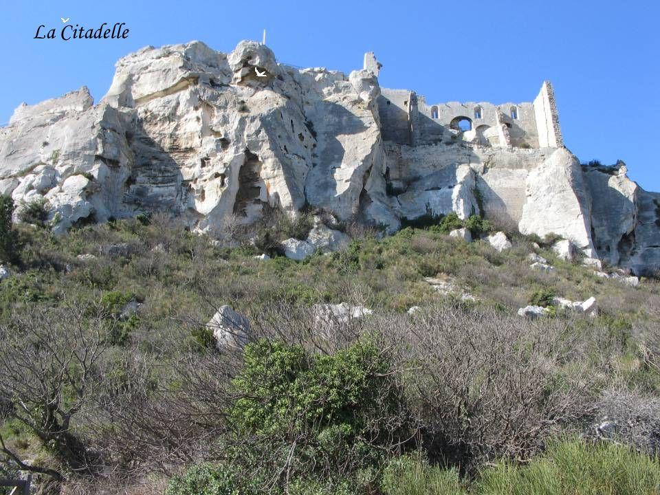 Le rocher de Vitrolles