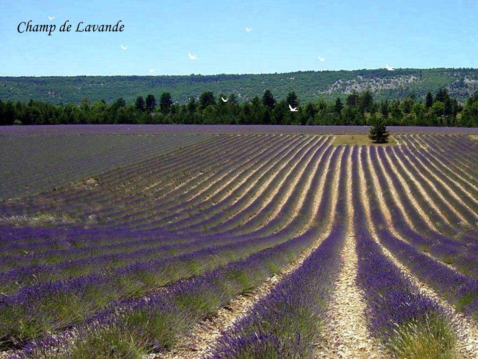 Chapelle des Baux de Provence
