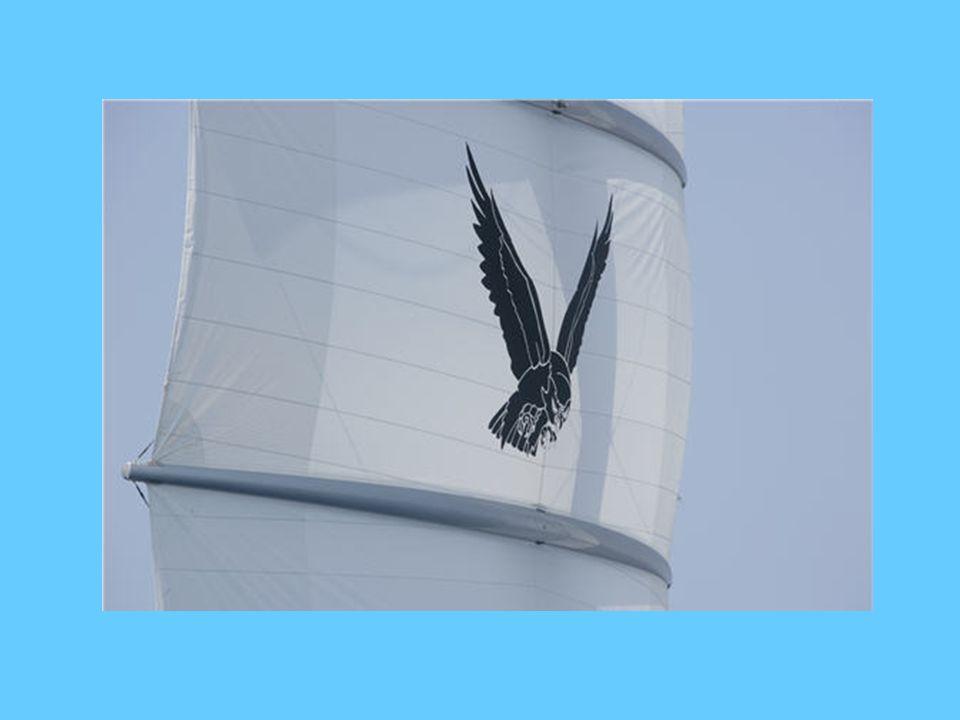 Dans tout le bateau on retrouve des représentations du faucon maltais même sur les serviettes de toilette.