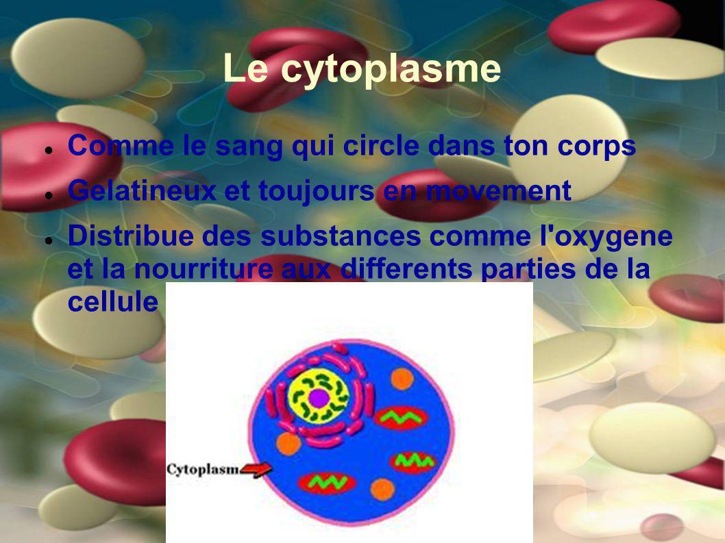 Le cytoplasme Comme le sang qui circle dans ton corps Gelatineux et toujours en movement Distribue des substances comme l'oxygene et la nourriture aux