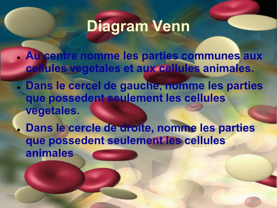 Diagram Venn Au centre nomme les parties communes aux cellules vegetales et aux cellules animales. Dans le cercel de gauche, nomme les parties que pos