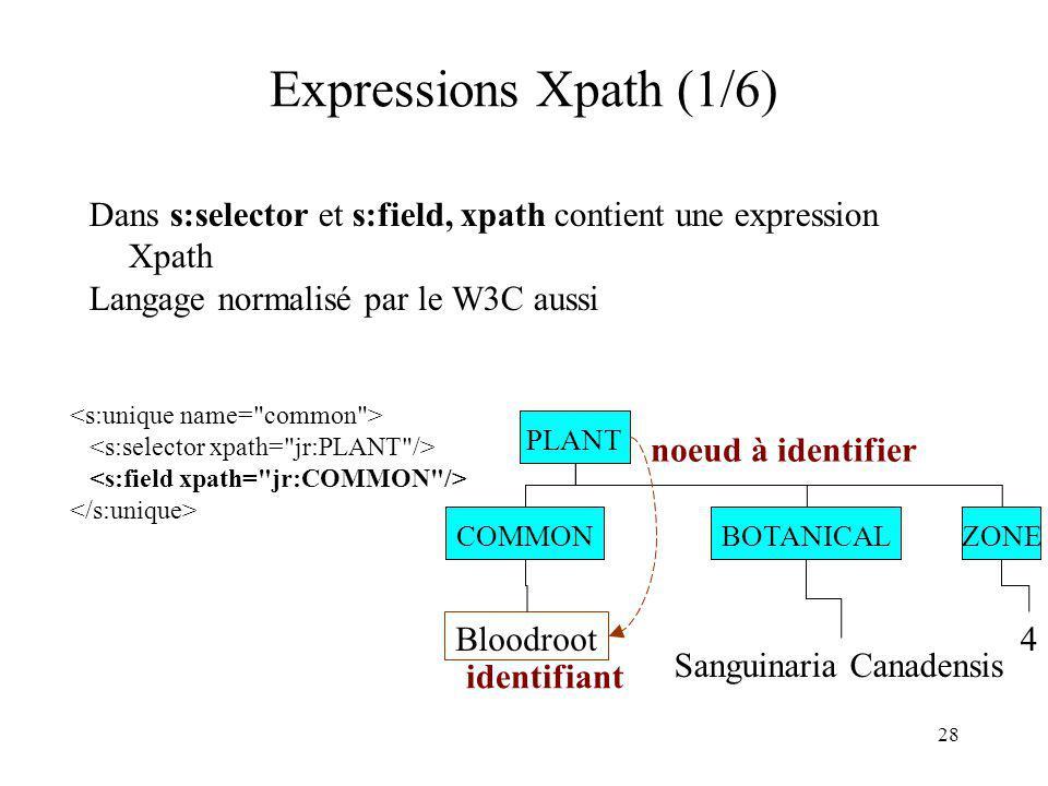 28 Expressions Xpath (1/6) Dans s:selector et s:field, xpath contient une expression Xpath Langage normalisé par le W3C aussi PLANT BOTANICALCOMMON Bl