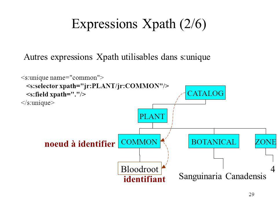 29 Expressions Xpath (2/6) Autres expressions Xpath utilisables dans s:unique PLANT BOTANICALCOMMON Bloodroot Sanguinaria Canadensis ZONE 4 noeud à id