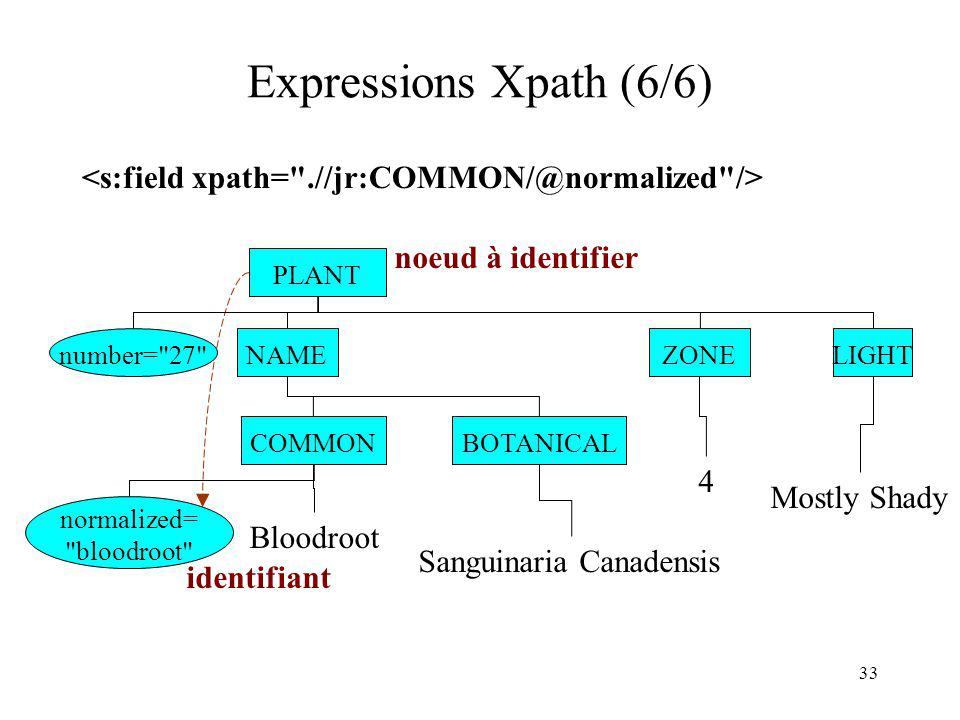 33 Expressions Xpath (6/6) PLANT NAME BOTANICALCOMMON Bloodroot Sanguinaria Canadensis ZONE...