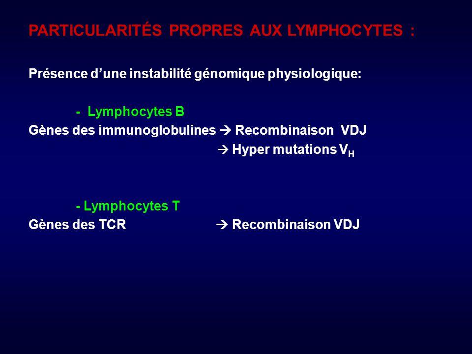 PARTICULARITÉS PROPRES AUX LYMPHOCYTES : Présence dune instabilité génomique physiologique: - Lymphocytes B Gènes des immunoglobulines Recombinaison VDJ Hyper mutations V H - Lymphocytes T Gènes des TCR Recombinaison VDJ