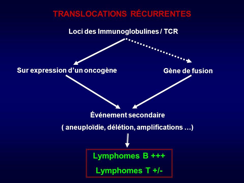 LYMPHOME MALT EXTRA GANGLIONNAIRE Anomalies clonales dans 60% des cas.