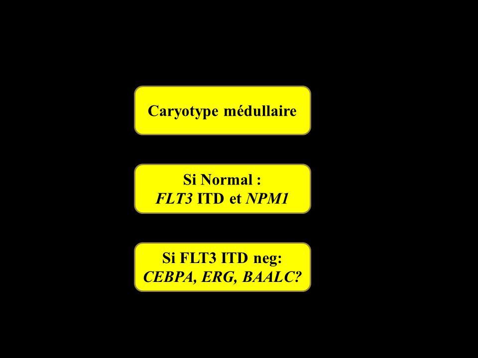 Caryotype médullaire Si Normal : FLT3 ITD et NPM1 Si FLT3 ITD neg: CEBPA, ERG, BAALC?