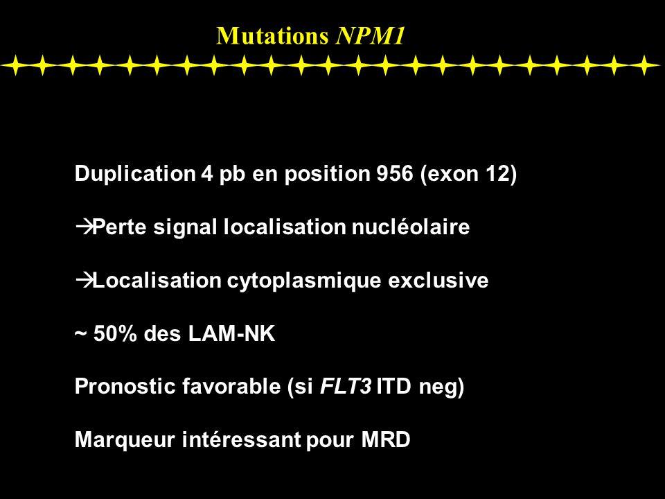 Mutations NPM1 Duplication 4 pb en position 956 (exon 12) Perte signal localisation nucléolaire Localisation cytoplasmique exclusive ~ 50% des LAM-NK Pronostic favorable (si FLT3 ITD neg) Marqueur intéressant pour MRD
