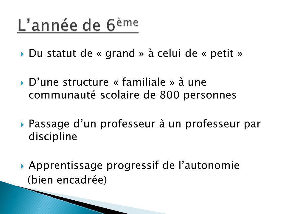 Du statut de « grand » à celui de « petit » Dune structure « familiale » à une communauté scolaire de 800 personnes Passage dun professeur à un profes
