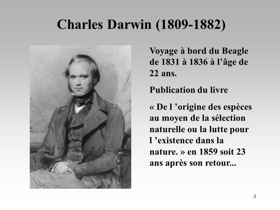 2 L être humain 340-102-03 La sélection naturelle de Darwin