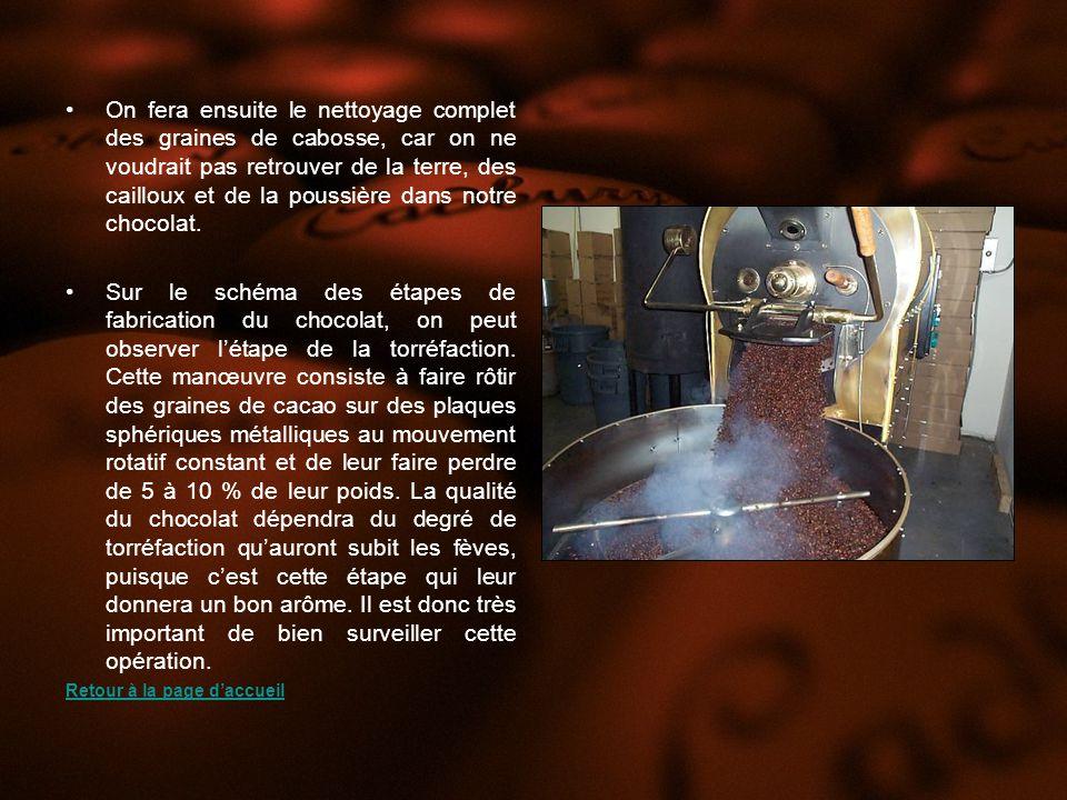 Lépreuve du Biuret - Dans la plaque à godet, déposer quelques gouttes de la solution de chocolat.