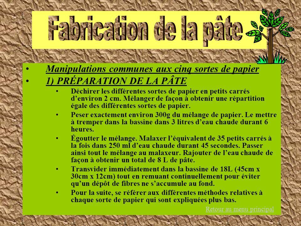Manipulations communes aux cinq sortes de papier 1) PRÉPARATION DE LA PÂTE Déchirer les différentes sortes de papier en petits carrés denviron 2 cm. M
