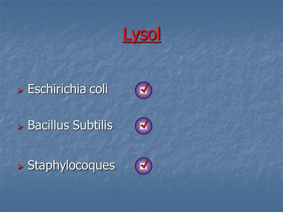 Lysol Eschirichia coli Eschirichia coli Bacillus Subtilis Bacillus Subtilis Staphylocoques Staphylocoques