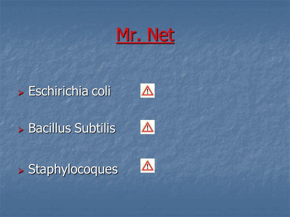 Mr. Net Eschirichia coli Eschirichia coli Bacillus Subtilis Bacillus Subtilis Staphylocoques Staphylocoques