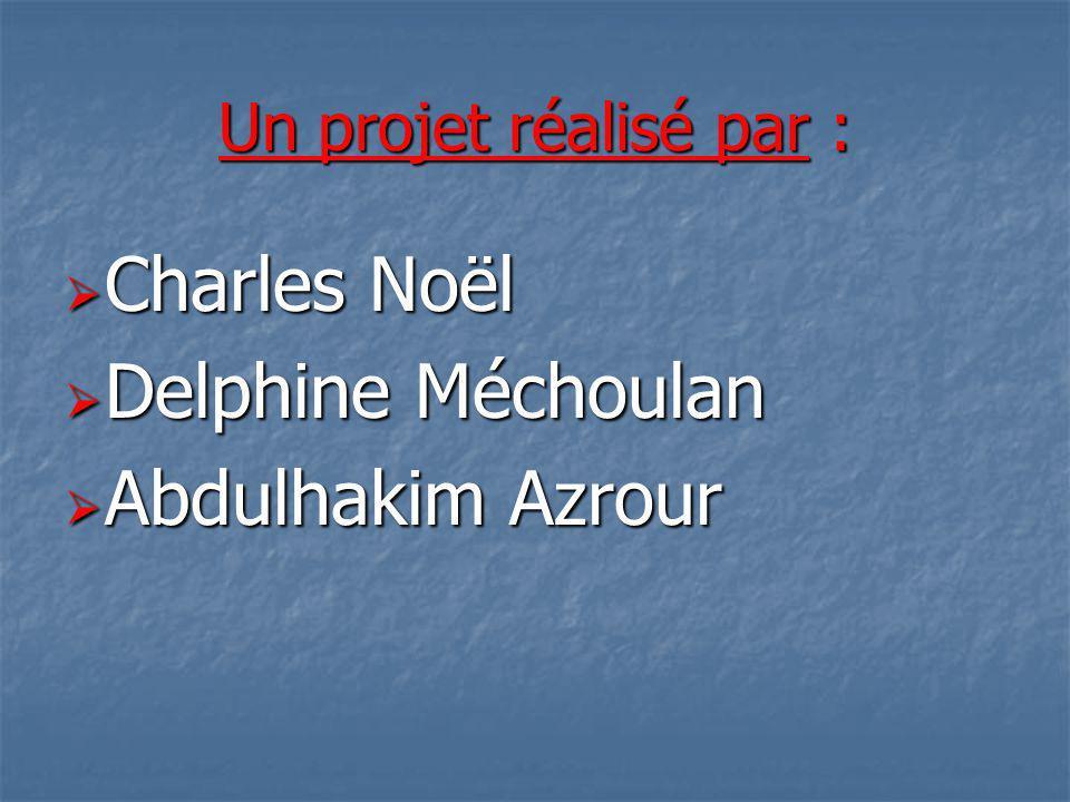 Un projet réalisé par : Charles Noël Charles Noël Delphine Méchoulan Delphine Méchoulan Abdulhakim Azrour Abdulhakim Azrour