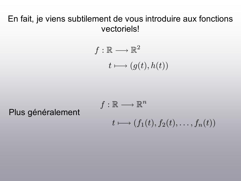 En fait, je viens subtilement de vous introduire aux fonctions vectoriels! Plus généralement