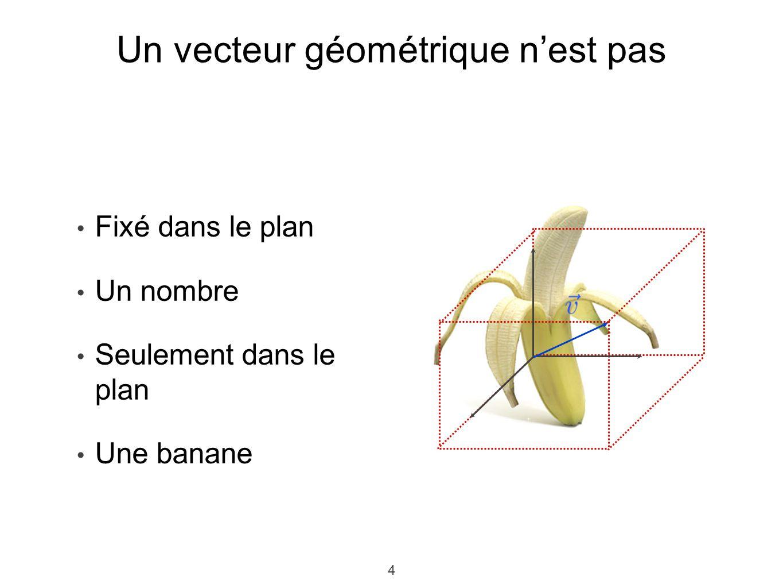 4 4 Fixé dans le plan Un nombre Seulement dans le plan Une banane Un vecteur géométrique nest pas