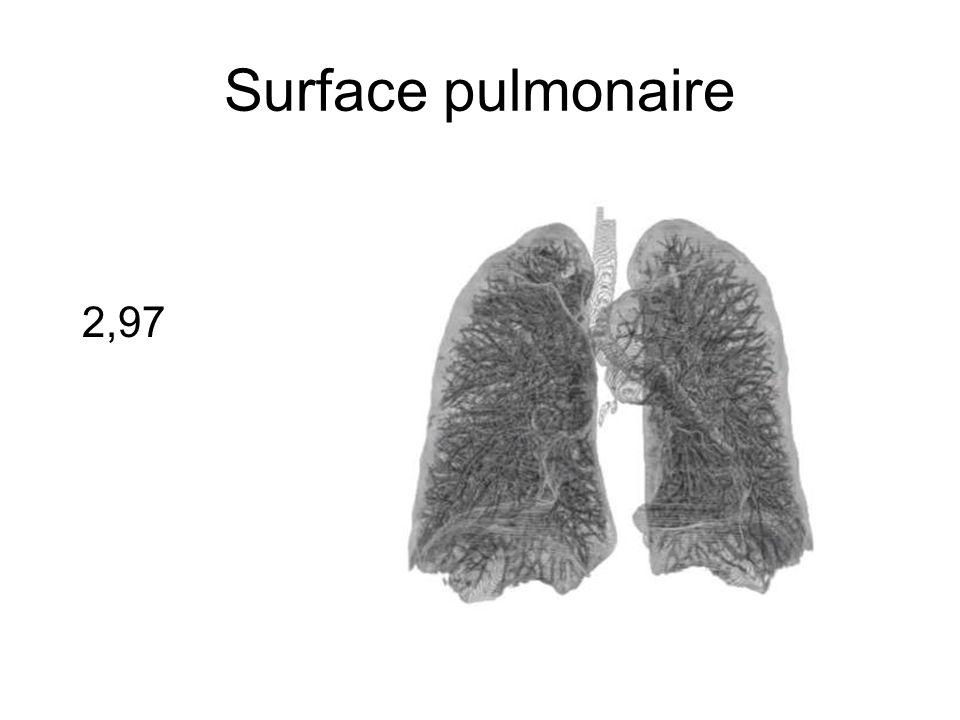 Surface pulmonaire 2,97