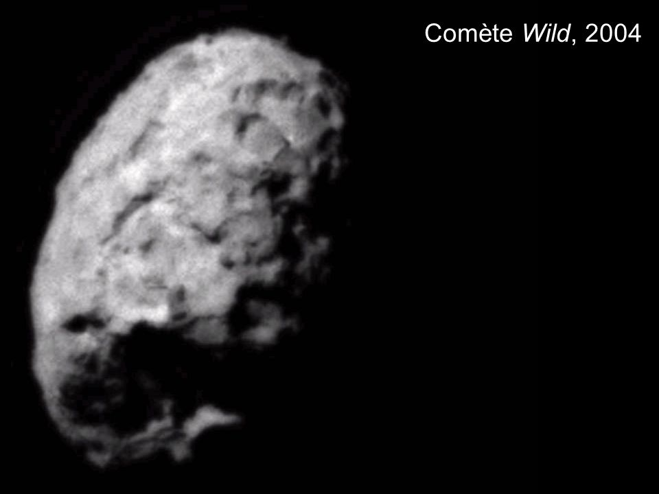 Comète Wild, 2004