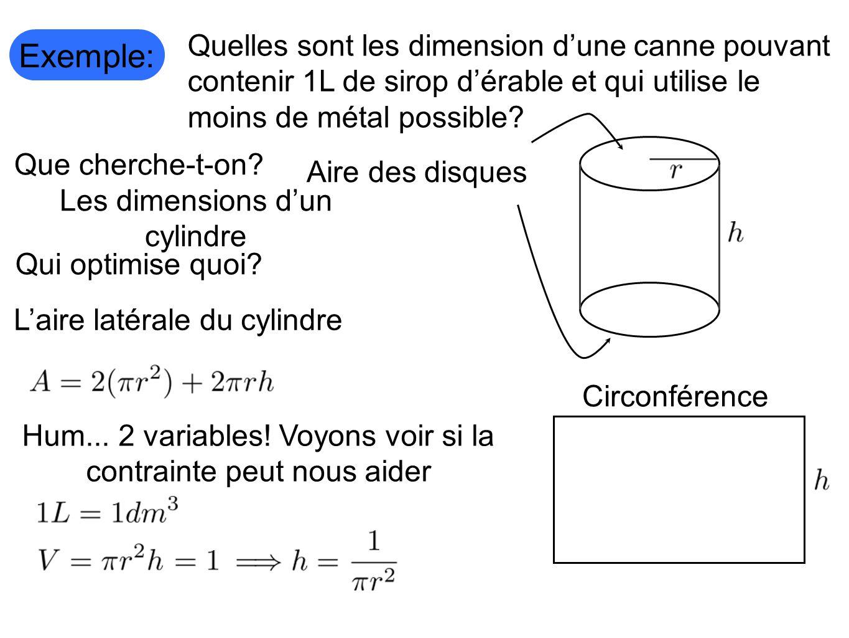 Exemple: Quelles sont les dimension dune canne pouvant contenir 1L de sirop dérable et qui utilise le moins de métal possible?