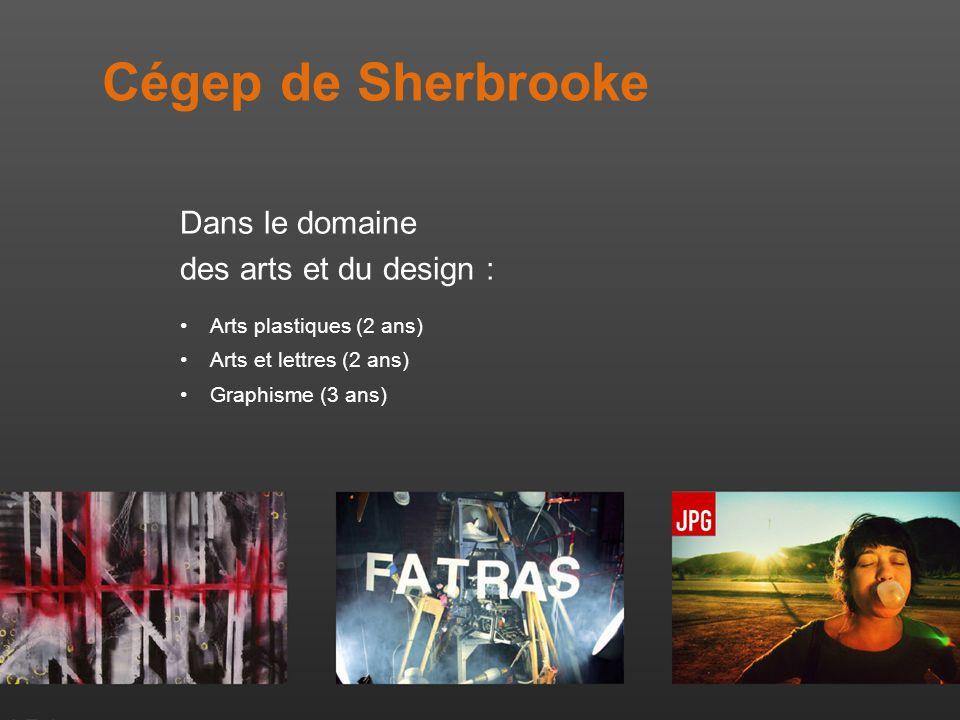 Cégep de Sherbrooke Dans le domaine des arts et du design : Arts plastiques (2 ans) Arts et lettres (2 ans) Graphisme (3 ans)