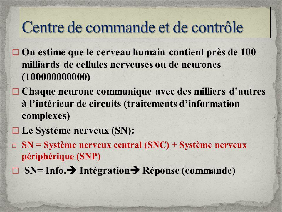 On estime que le cerveau humain contient près de 100 milliards de cellules nerveuses ou de neurones (100000000000) Chaque neurone communique avec des