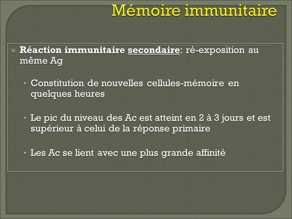 Mémoire immunitaire Réaction immunitaire secondaire: ré-exposition au même Ag Constitution de nouvelles cellules-mémoire en quelques heures Le pic du