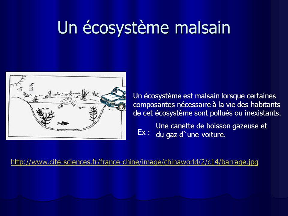 Un écosystème malsain http://www.cite-sciences.fr/france-chine/image/chinaworld/2/c14/barrage.jpg Une canette de boisson gazeuse et du gaz d`une voiture.