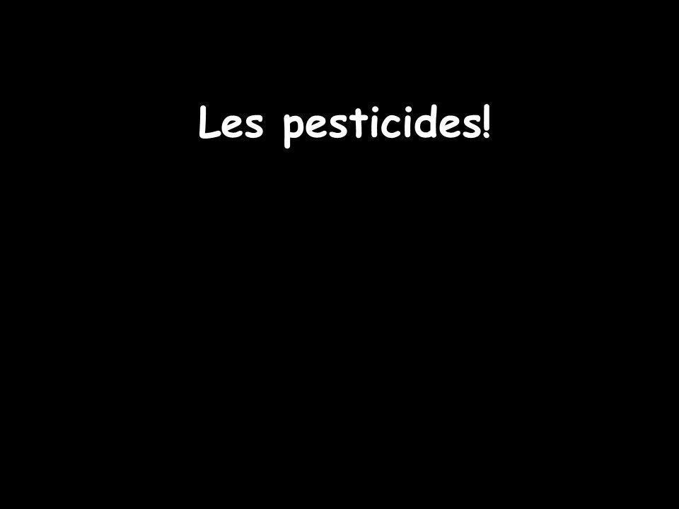 Les pesticides!