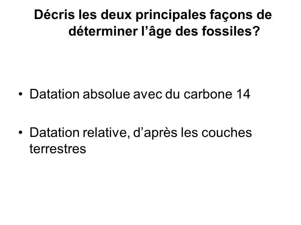 Décris les deux principales façons de déterminer lâge des fossiles? Datation absolue avec du carbone 14 Datation relative, daprès les couches terrestr
