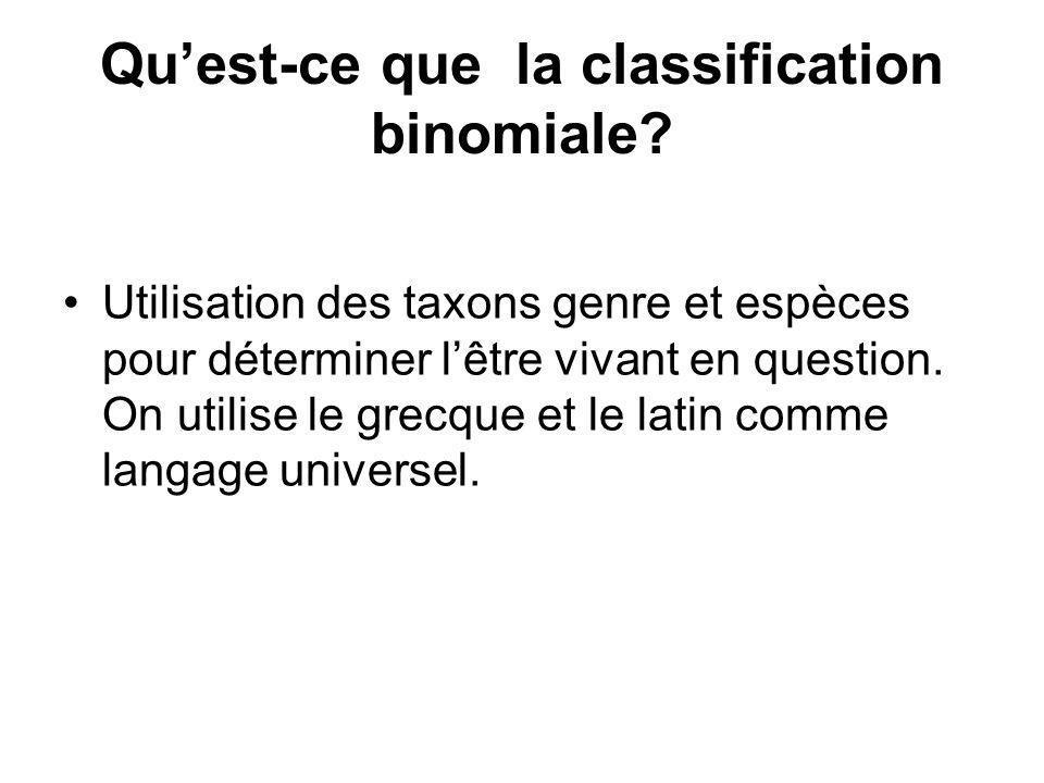 Quest-ce que la classification binomiale? Utilisation des taxons genre et espèces pour déterminer lêtre vivant en question. On utilise le grecque et l