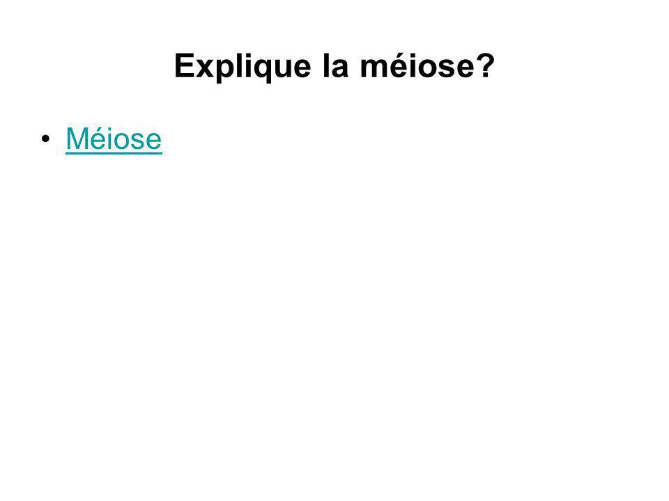 Explique la méiose? Méiose