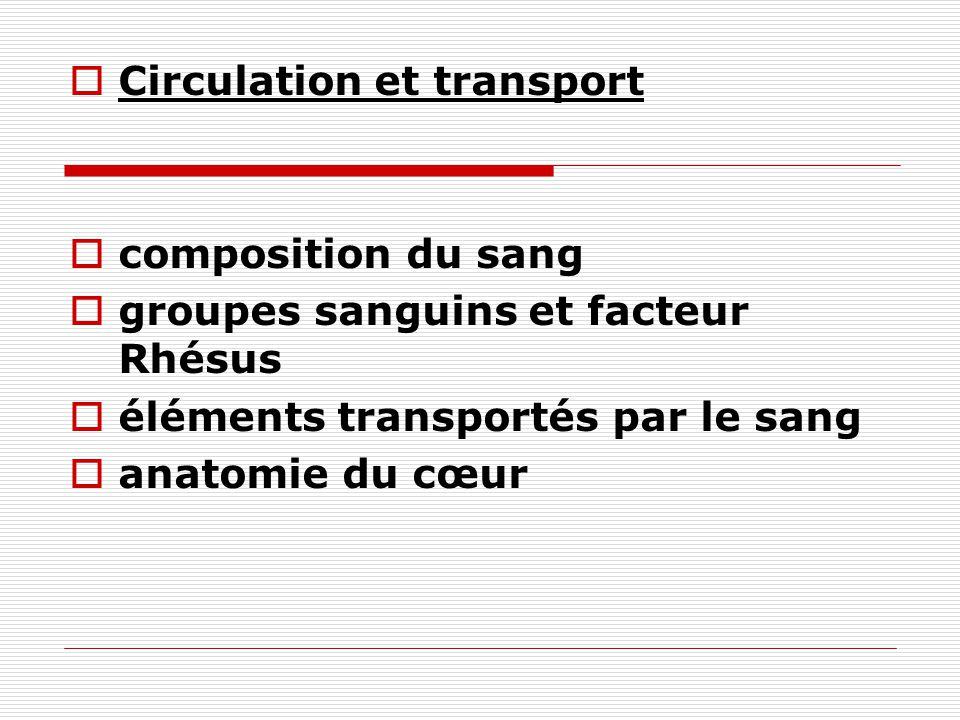 Circulation et transport composition du sang groupes sanguins et facteur Rhésus éléments transportés par le sang anatomie du cœur