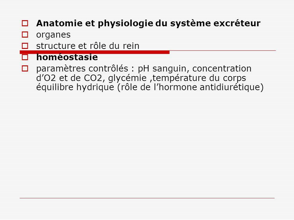 Anatomie et physiologie du système excréteur organes structure et rôle du rein homéostasie paramètres contrôlés : pH sanguin, concentration dO2 et de