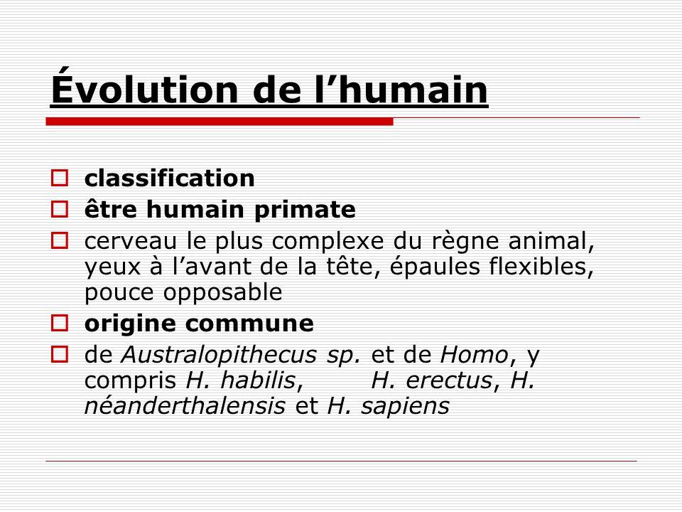 Évolution de lhumain classification être humain primate cerveau le plus complexe du règne animal, yeux à lavant de la tête, épaules flexibles, pouce o