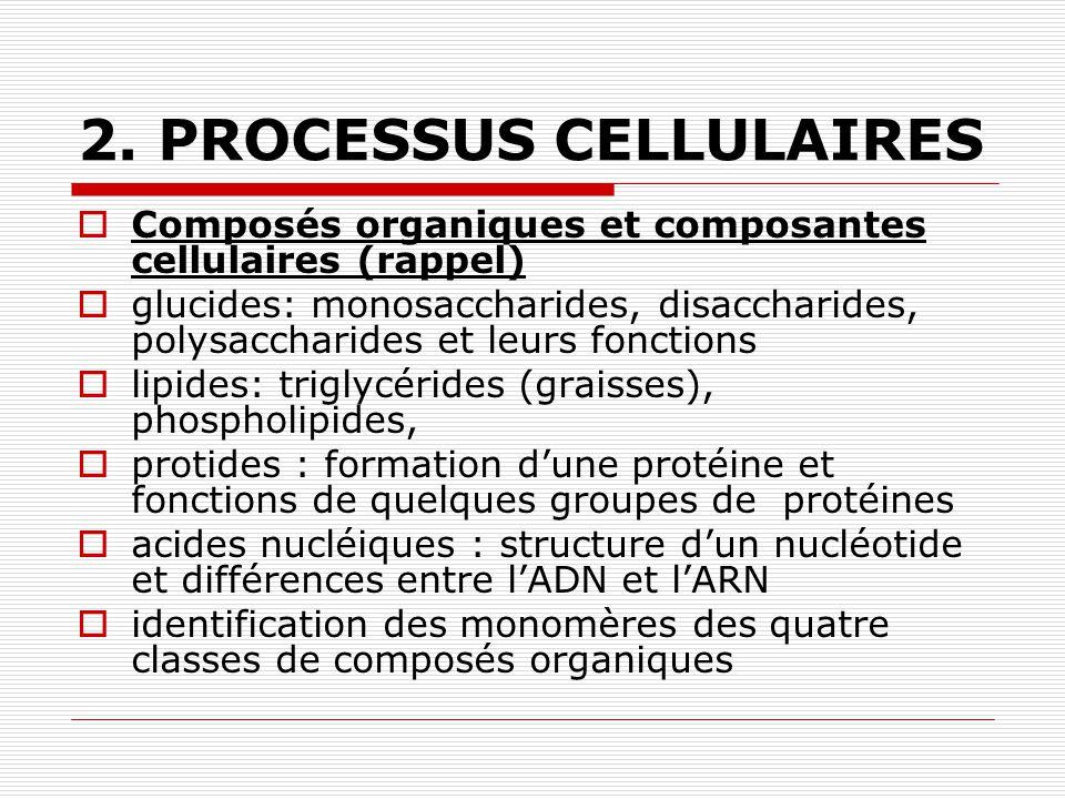 2. PROCESSUS CELLULAIRES Composés organiques et composantes cellulaires (rappel) glucides: monosaccharides, disaccharides, polysaccharides et leurs fo